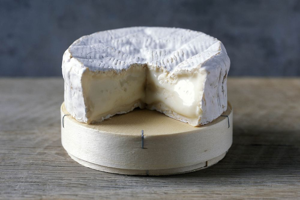 12) Camemburt cheese