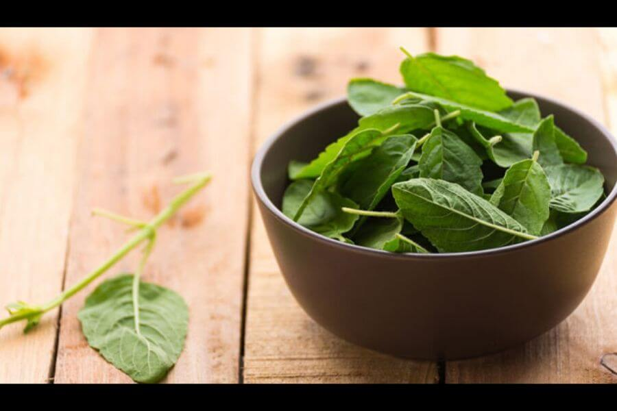 Tulsi leaves must be swallowed rather than chewing