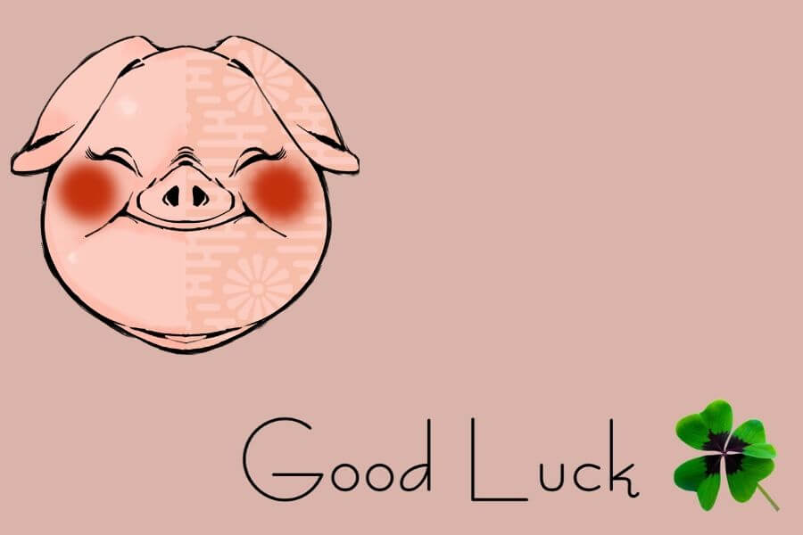 The Good luck Pig